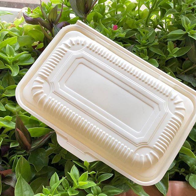 بازار ظروف یکبار مصرف گیاهی
