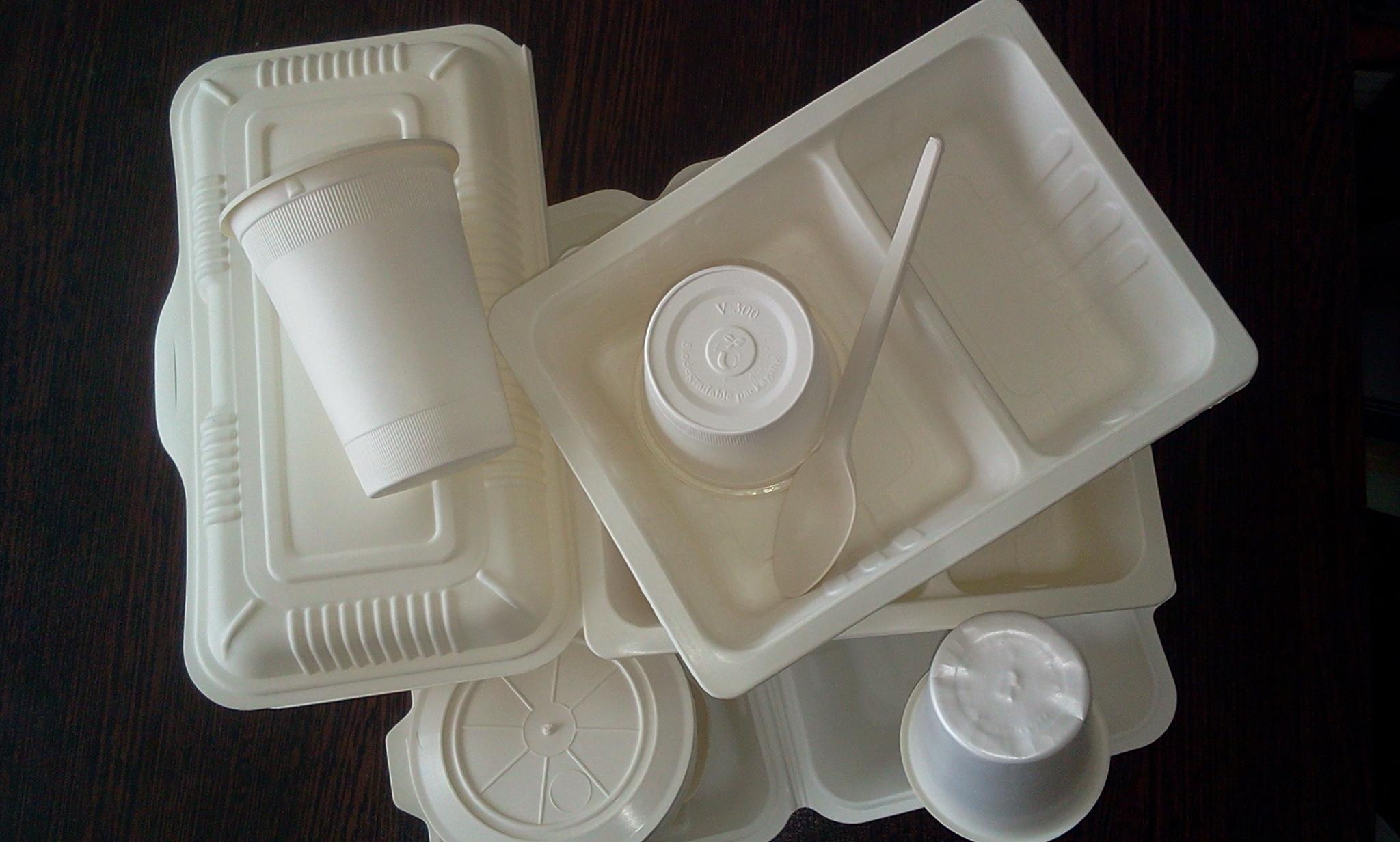 فروش ظروف یکبار مصرف گیاهی