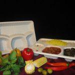 عمده فروش ظروف یکبار مصرف گیاهی
